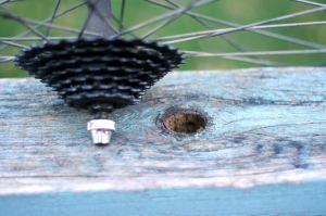 Freewheel Mounting Hole Image