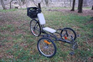 Home Made Recumbent Tadpole Trike Image