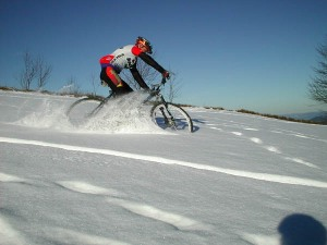 Winter Mountain Biker